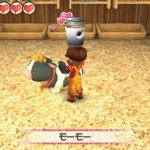 Story of Seasons: Friends of the 3 Hometowns